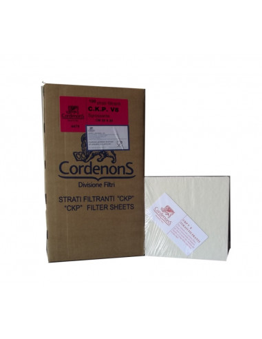 Cartoni filtranti CKP V16 20X20